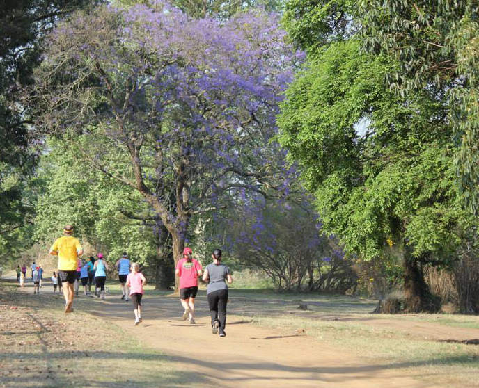 ParkRun South Africa